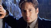 Click image for larger version  Name:	david-duchovny-193763.jpg Views:	1 Size:	48.3 KB ID:	3494398