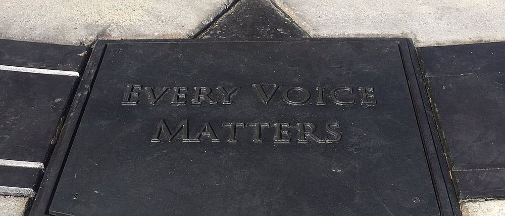 Blizzard Every Voice Matters